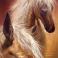 Golden Palomino by Carol Cavalaris
