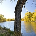 Golden Pond Panorama by Bonfire Photography