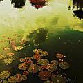Golden Pond by Yen