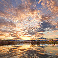 Golden Ponds Scenic Sunset Reflections 3 by James BO  Insogna