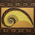Golden Ratio Spiral by Maya B
