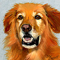 Golden Retriever Dog by Alice Leggett