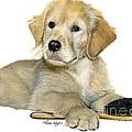 Golden Retriever Puppy by Liane Weyers
