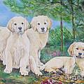 Golden Retriever Puppy Trio  by Gail Dolphin