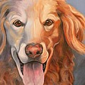 Golden Retriever Till There Was You by Susan A Becker