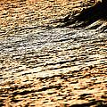 Golden Sea by Aleksejs Volkovs
