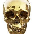 Golden Skull by Vitaliy Gladkiy