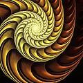 Golden Spiral by Anastasiya Malakhova