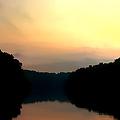 Golden Sunrise by Debra Forand