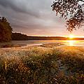 Golden Sunrise by Jonathan Steele