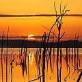 Golden Sunrise by Roger Becker