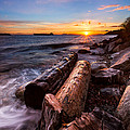 Golden Sunset by Alexis Birkill