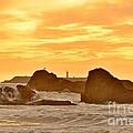 Golden Sunset At Ruby Beach by Rachel Cash