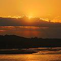 Golden Sunset by Elizabeth Winter