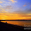 Golden Sunset On The Harbor by CapeScapes Fine Art Photography