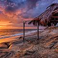 Golden Sunset The Surf Shack by Peter Tellone