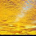Golden Sunset by William Bartholomew
