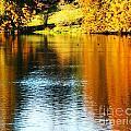 Golden Water by Lizi Beard-Ward