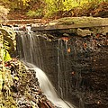 Golden Waterfall October In Ohio by Dan Sproul