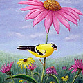 Goldfinch And Coneflowers by Fran Brooks