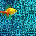 Goldfish Study 3 - Stone Rock'd Art By Sharon Cummings by Sharon Cummings