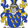 Golding Coat Of Arms Irish by Heraldry