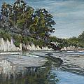 Goleta Reflections by Patricia  Cluche