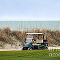 Golf Cart At Kiawah Island Golf Course by Catherine Sherman