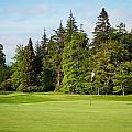 Golf Course by Tom Gowanlock