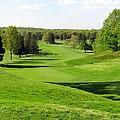 Golfer's Dream by Ed Weidman