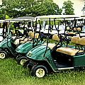 Golfers Take Your Pick by Sandi OReilly