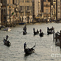 Gondolas On The Grand Canal by Dennis Hedberg