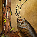 Gone Fishin by Bill Wakeley