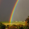 Gonzalo Rainbow by Jeremy Hayden