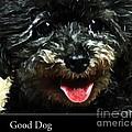 Good Dog . Affiche by Renee Trenholm