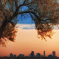 Good Morning Denver by Darren  White