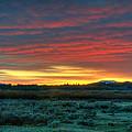 Good Morning Jackson Hole by Steve Stuller