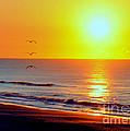 Good Morning Sunshine by Lydia Holly