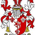 Goodwin Coat Of Arms Irish by Heraldry