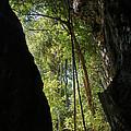 gorge in the Tsingy de Bemaraha Madagascar by Rudi Prott