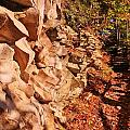 Gorge Trail Wall by Laurie Tracy