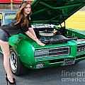 Gorgeous Green Goat Gto by Mark Spearman