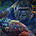 Gorillas In The Mist by Wendie Busig-Kohn