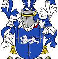 Gorman Coat Of Arms Irish by Heraldry