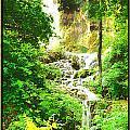Gorman Falls by Jim Sanders