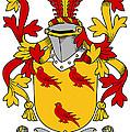 Gormley Coat Of Arms Irish by Heraldry
