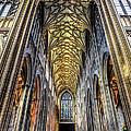 Gothic Architecture by Adrian Evans