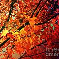 Gothic Autumn Leaves by Absinthe Art By Michelle LeAnn Scott