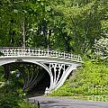 Gothic Bridge In Central Park by Carol Ailles