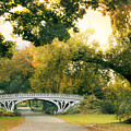 Gothic Bridge In Central Park by Jessica Jenney